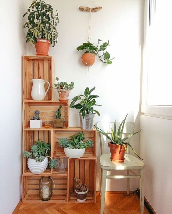 crates with potted greenery storage