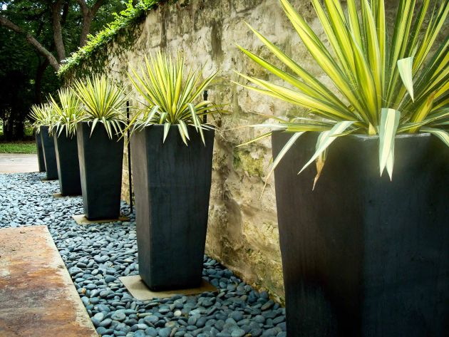 Contemporary Garden Design Ideas By BLUE Renovation & Landscape