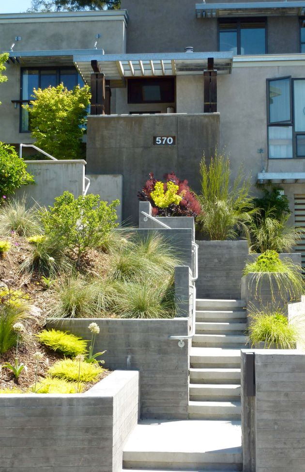 Contemporary Garden Design Ideas By Baird Wheatley Design