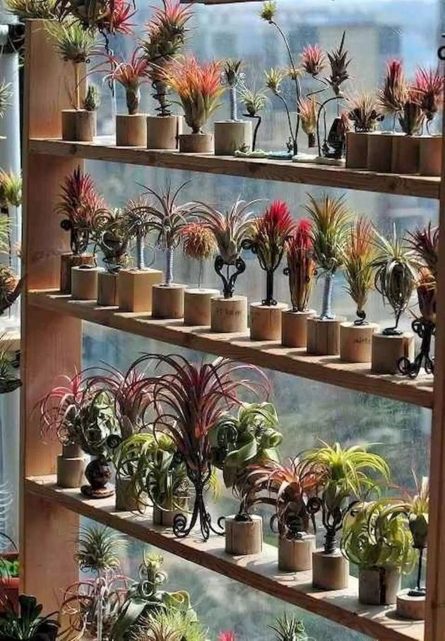 DIY BambooPots and Containers Gardening Ideas