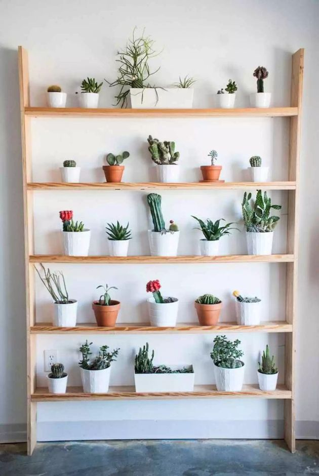 DIY Pots and Containers Gardening Ideas