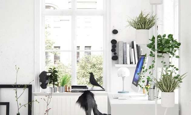 Modern Home Office With A Tall Plant Stand