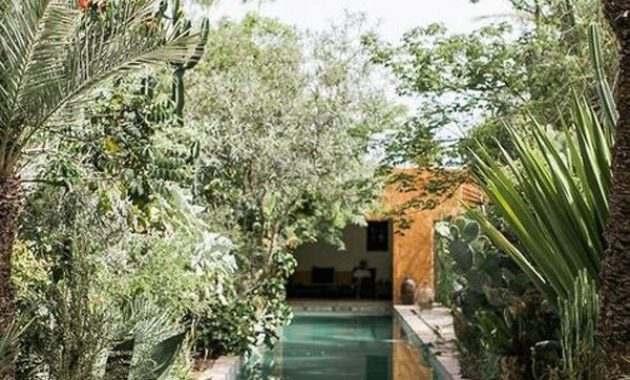 Outdoor Swimming Pool With Tropical Plants