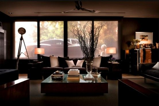 Dark Masculine Living Room With Elegant Upholstered Furniture