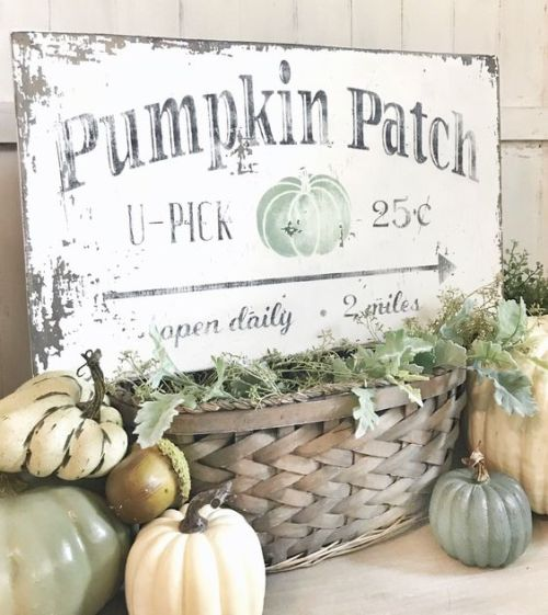 Creative And Unique Fall Sign To Welcome Autumn With A Shabby Chic Sign With Black Letters And A Green Pumpkin Placed On A Basket With Greenery And Surrounded By Pumpkins