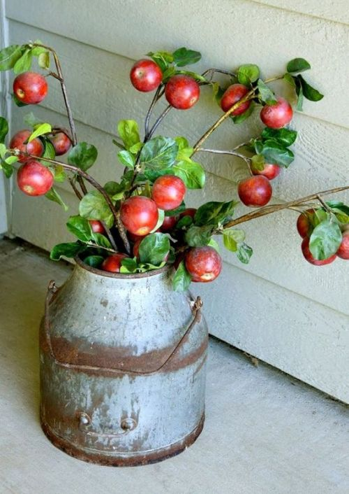 Fall Home Décor Idea With A Vintage Metal Bucket With Apple Branches
