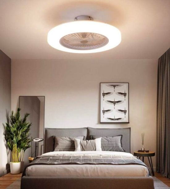 Ceiling Fan With Ring Light