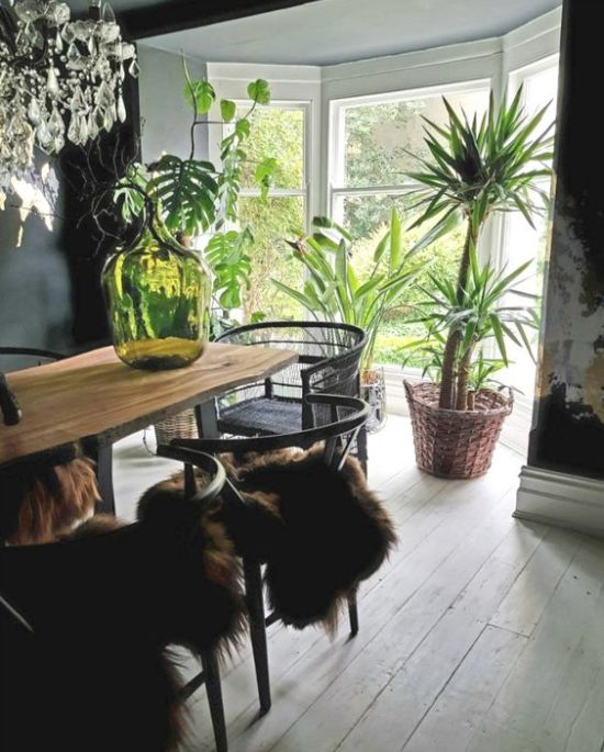 Dining Room Décor With Greenery In Large Pots