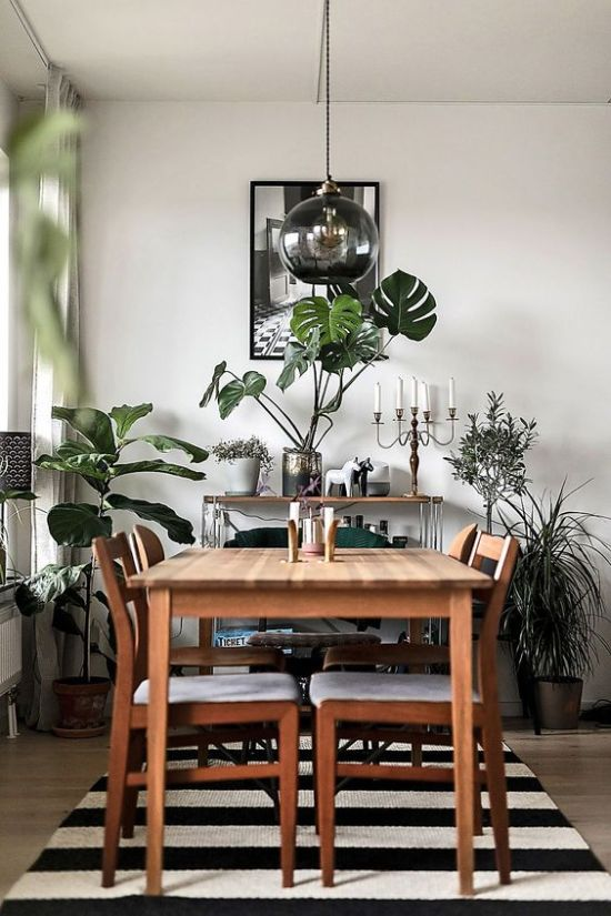 Dining Room Décor With Greenery In Vases And Pots