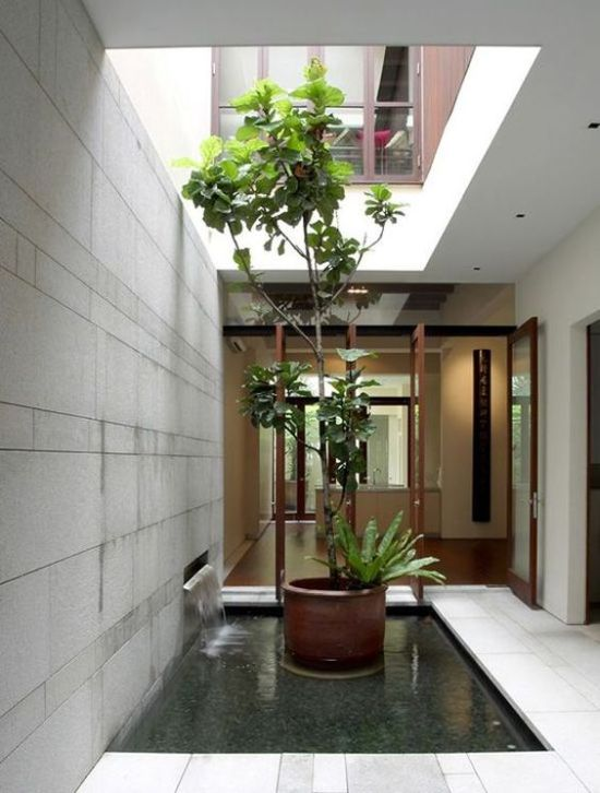 Indoor Courtyard Design Idea With A Pond And Some Potted Plants