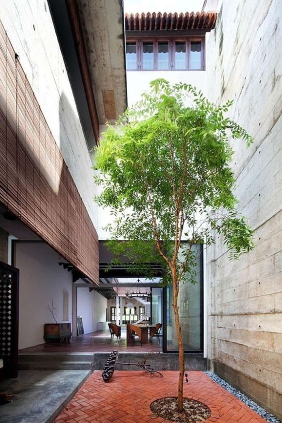Indoor Courtyard Design Idea With A Single Tree And Brick