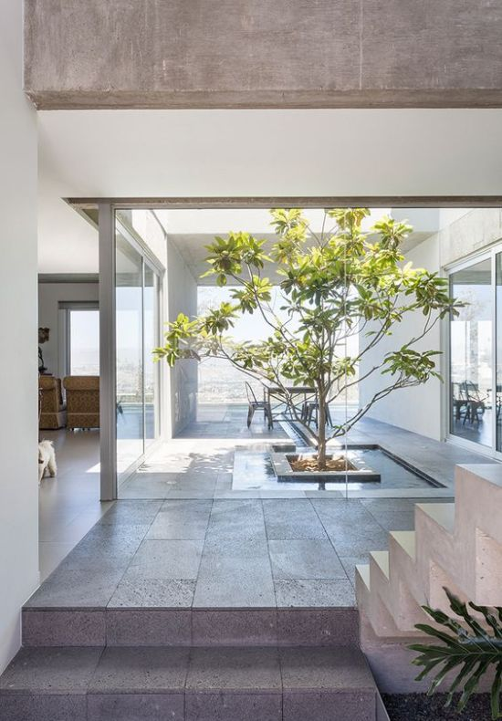 Indoor Courtyard Design Idea With A Water Body