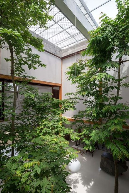 Indoor Courtyard Design Idea With Lots Of Trees And Plants