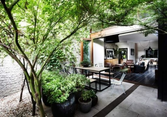 Indoor Courtyard Design Idea With Potted Plants And Trees