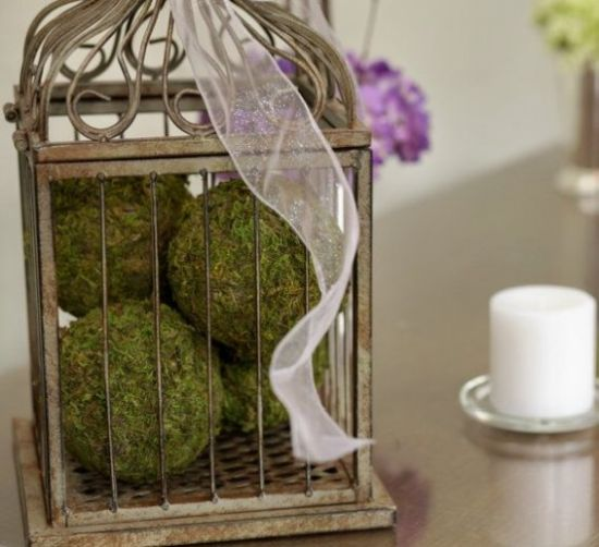 Spring Home Décor With Cage With Moss Balls And Ribbons