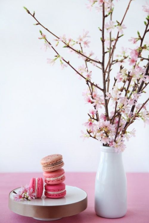Spring Home Décor With Cherry Blossoms In A Vase