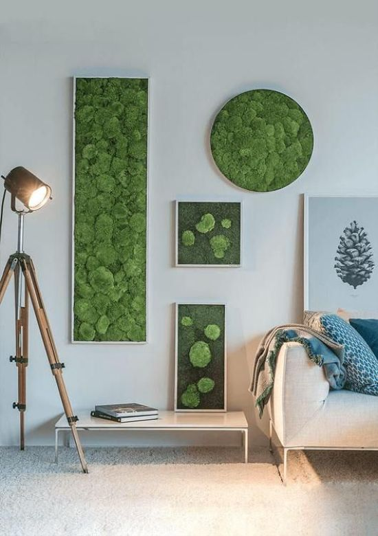 Spring Home Décor With Moss Wall Art In Various Shapes