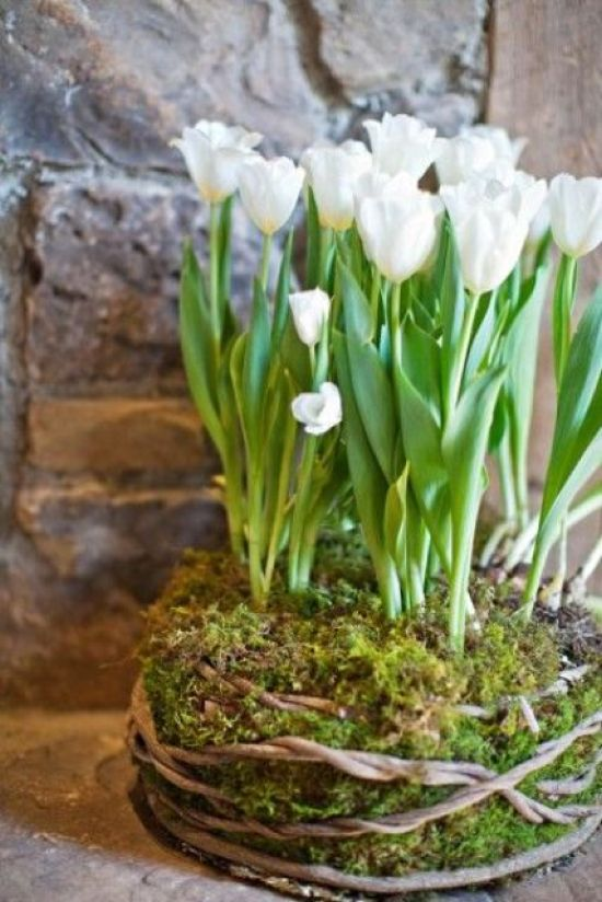 Spring Home Decor With White Tulips