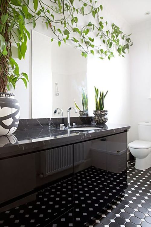 Bathroom With A Black Stone Vanity And Succulents