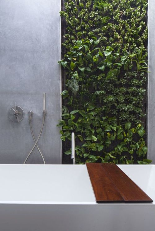 Minimalist Bathroom Clad With Concrete And With A Living Wall