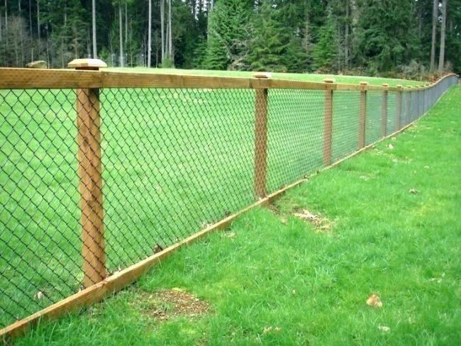 Cheap Backyard Fence Ideas For Dogs On A Budget
